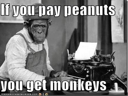Vimexx, is dat wat?-if-you-pay-peanuts-you-get-monkeys5-jpg