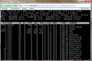 CPU? Problemen centos op VPS. Zoeken is erg traag-cpu-png